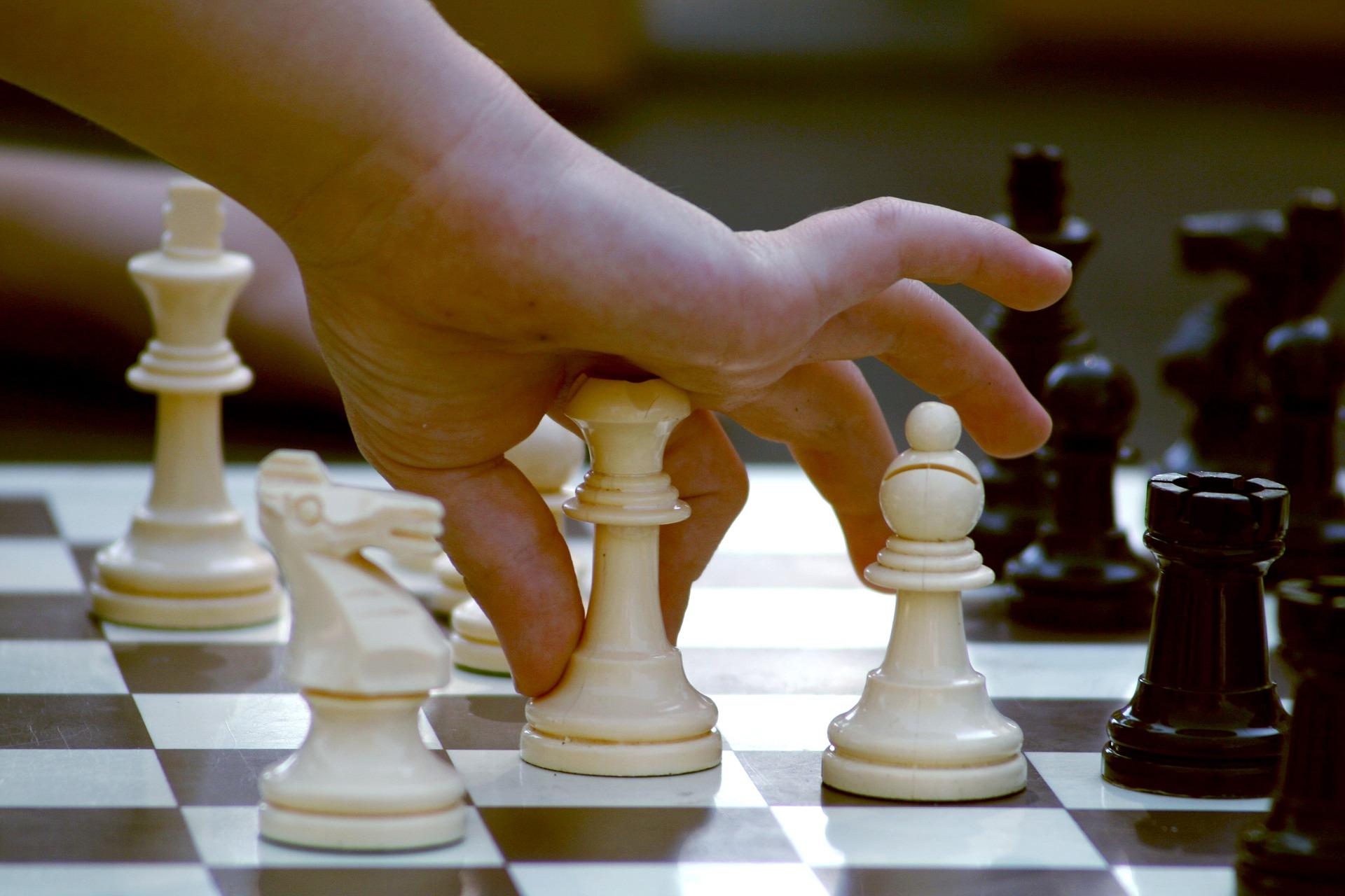 Procurement strategy – success in public tenders